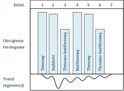 Trening kompleksowy - klasyczny pływacki mikrocykl