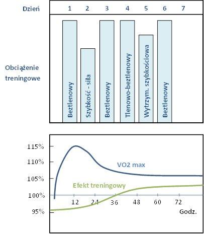 Trening ukierunkowany - mikrocykl nastawiony na kształtowanie wydolności beztlenowej